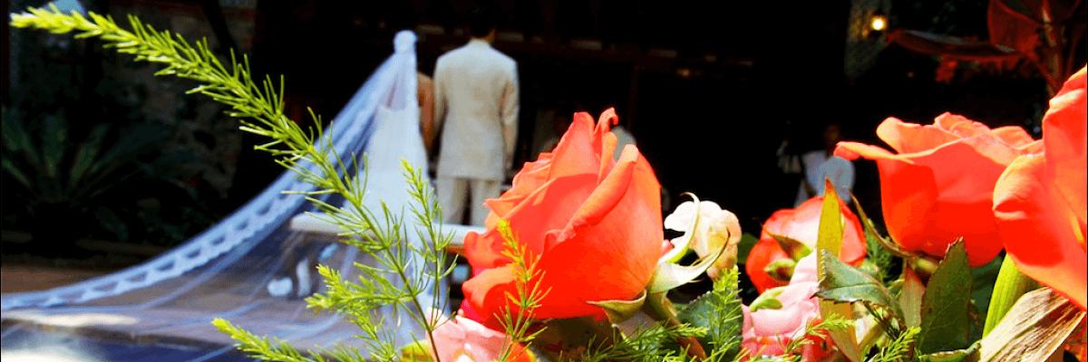 Florería Rosas Blancas
